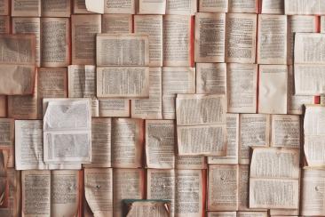 What I'm reading - Nonfiction November
